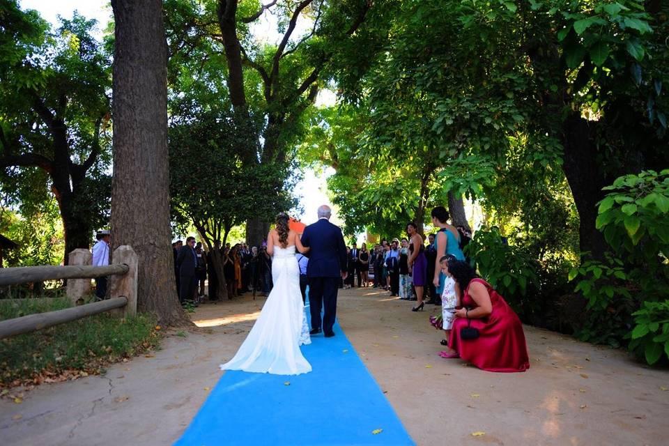 Matrimonio entrada