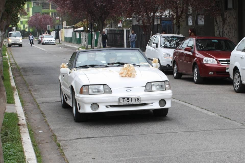 Transportes F&S Guerrero