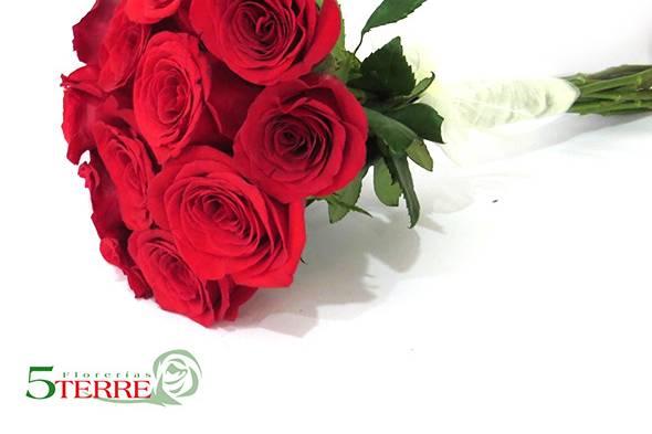 Florerías 5Terre