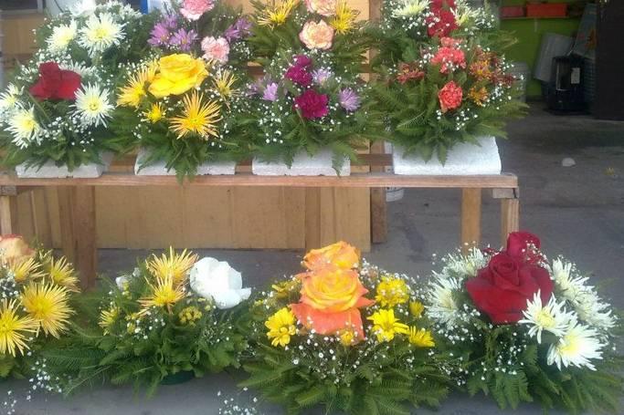 Florería Solange